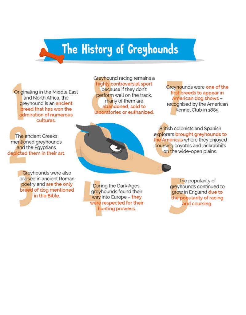 greyhounds3