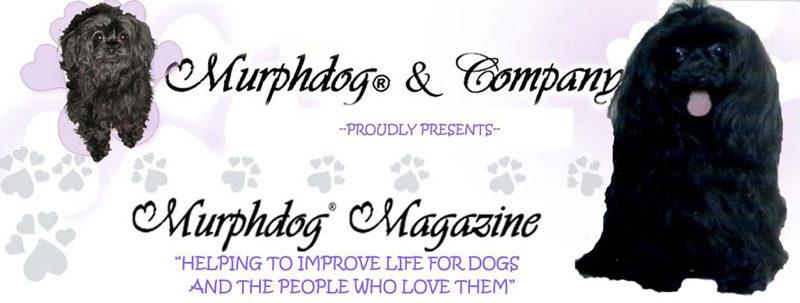 Murphdog Magazine